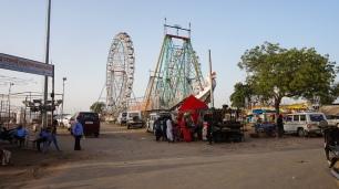 Camel Fair